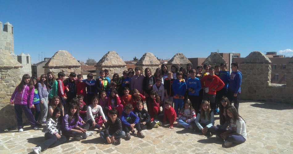 Participantes del C.R.A. Santa Teresa (Narros del Castillo), C.R.A. Miguel Delibes (Mingorria), C.C. Divina Pastora (Arenas de San Pedro) y C.P. La Moraña (Arévalo)