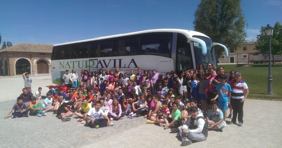 Participantes del C.C. Amor de Dios (Arévalo), C.C. Santisima Trinidad (El Tiemblo), C.R.A. Alto Alberche (Navatalgordo), C.R.A. Alto Gredos (Navarredonda de Gredos), C.R.A. Valdelavia (Herradon de Pinares), C.R.A. Alto Tietar (Navahondilla, Santa Maria del Tietar y Casillas) y C.R.A. Concepción Arenal (Casavieja)