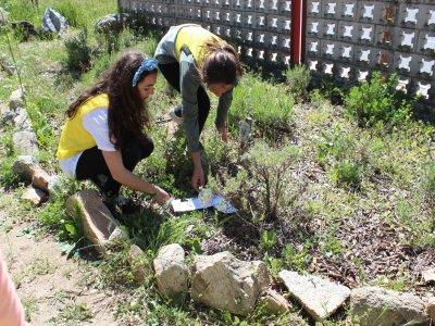 Participantes del I.E.S. Adaja (Arévalo)