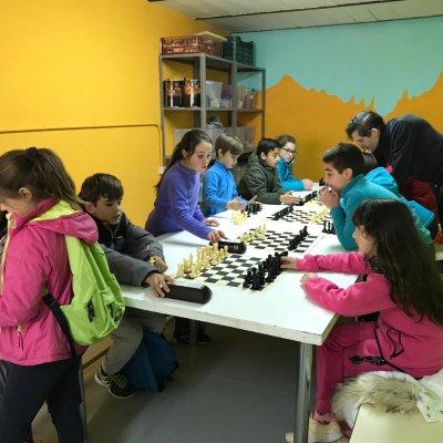 Actividad principal: Ajedrez en Naturávila