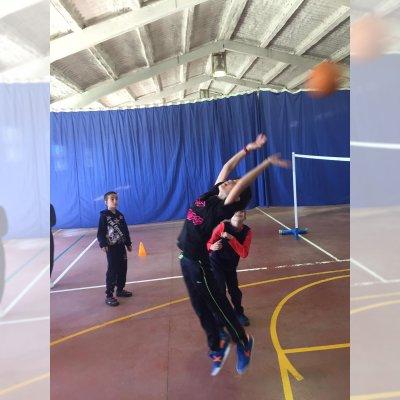 Actividad principal: Voleibol