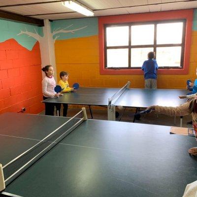 Actividad principal: Tenis de mesa