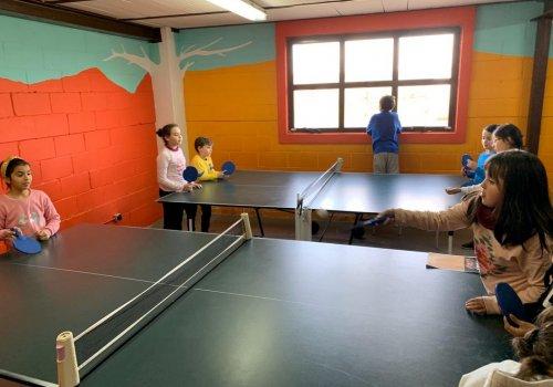 6 (Tenis de mesa)